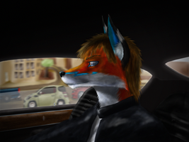 Cruising Around San Francisco by James-Foxtaur