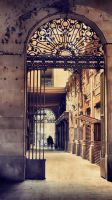 The Gothic Quarter by ralucsernatoni