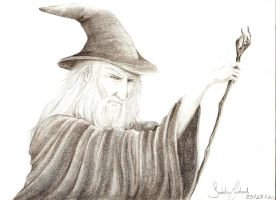 Gandalf by PuppyBleew