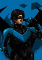 Nightwing22 by ErgoAsch