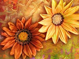 Orange and Yellow Flowers by Tackon