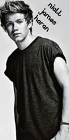 Niall Bookmark 3 by iluvlouis