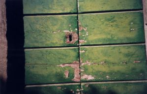 Green door of time by tinder