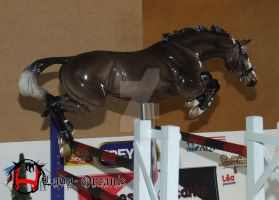 Free Jumping by Lady-Orcanie