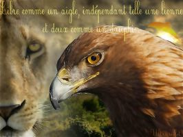 Eagle and lion by ultraviolet1981