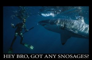 LOL SHARKS 10 by badcop69