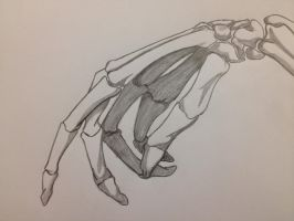 Sketchy Hand by Avalonfang4