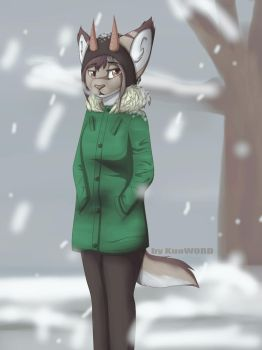 Winter by KuoWORD