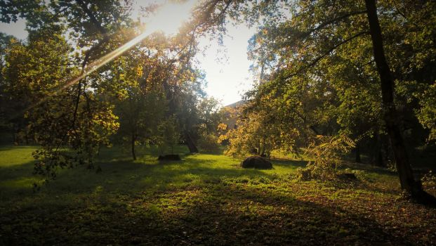 Park behind the Monastery by Matthew666x