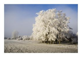 onset of winter by matze-end
