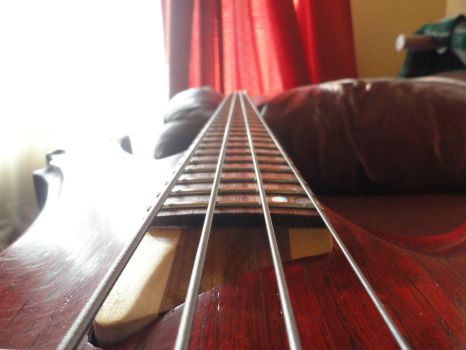 4 string Custom Bass Guitar [BXX-00/2015] 03 by PtolemaiosLS