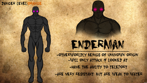 Enderman Journal Entry by Vectorman316