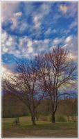 Angry Skies of Winter 2014 08 by slowdog294