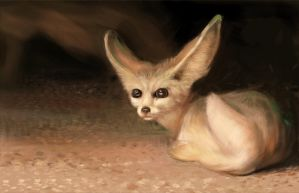 little fennec - digital painting by speedy-painter