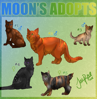 Adoptable Contest -FREE- by TheMoonfall