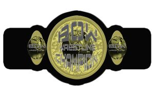 BOW championship belt 2013 by RWhitney75