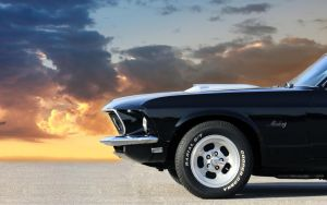 1969 Mustang Profile by joerayphoto