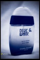 :: Blue aNd White :: 2 :: by MaStErOfCaRz