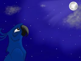Night sky by ToffyNaNa