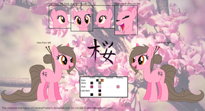 Sakura Kiss Official Reference Sheet by Caro-Kitty