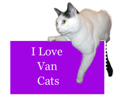 Love Van Cats by Loulou13