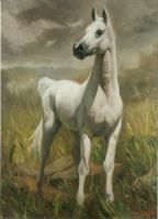 horse painting by memo-80