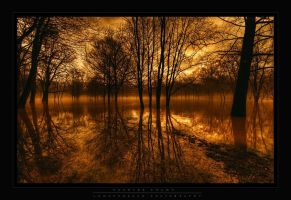 Haunted Swamp by lowapproach