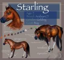 Starling Character Sheet by Ospreyghost13