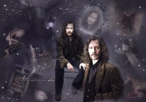 SIRIUS BLACK by VaL-DeViAnT
