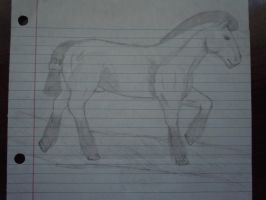 Roached Mane Draft Horse Sketch by ShanSherazi