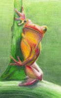 Frog by lawngnome