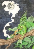The Frog and The Moon by LadyOrlandoArt