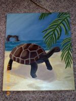 Turtle in Paradise by Lily-Hith-Silme