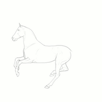 Shankara's Canter WIP 1 by BH-Stables