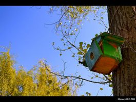 nest, sweet nest by Iulian-dA-gallery