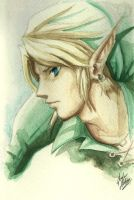 Link Watercolor Quickie by JD-SPEEDbit