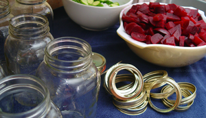 DIY Canned Pickles and Beets by maytel