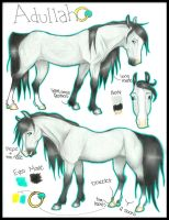 -Adullah Ref by CatcherOfDreamss