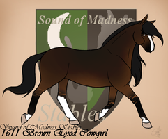 1611 SoMS Brown Eyed Cowgirl by SoM--Stables