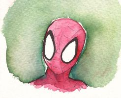 SPIDERMAN by luisashi