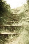 Stairs by MikeyHramiak