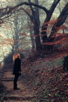 automne tardif II by l0ndon-boulevard