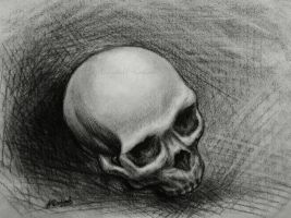 Skull No 2 by Isisnofret