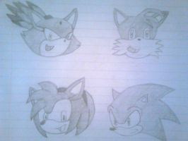 Blaze, Tails, Amy and Sonic by jharris5398
