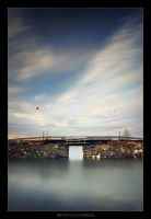 French Island Bridge by tfavretto
