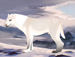The Milky-Way's New Moon 6749 by TotemSpirit