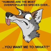 Derpwolf Meme - Overpopulated by hlemmur