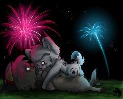 4th of July Fireworks by DrunkMutt