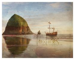Parley Detail - Cannon Beach by Foxfires