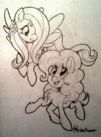 Scrap: Fluttershy and Pinkie Pie by Shellsweet